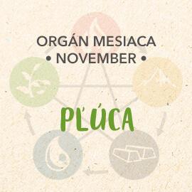 Organ mesiaca Novembera - pľuca