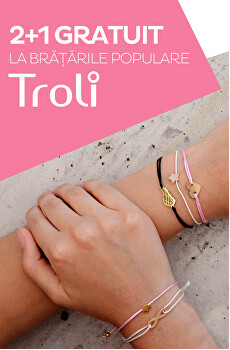 Troli 2+1