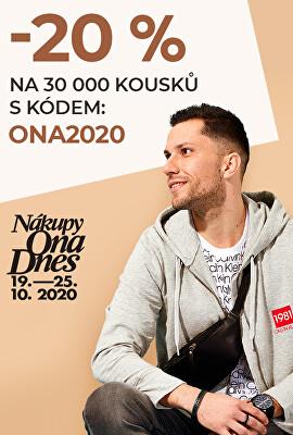 ONA DNES 2020