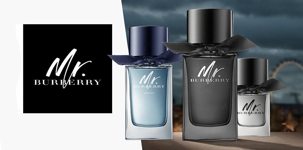 Burberry - kolekce Mr. Burberry