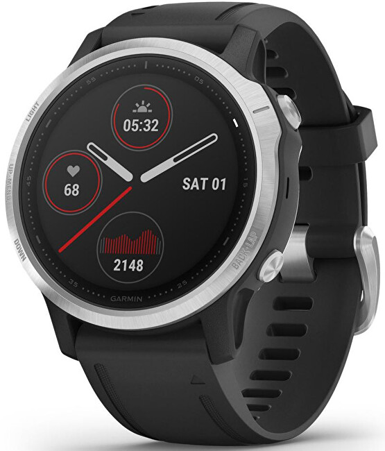 Garmin Fenix 6S Silver Black Band 010-02159-01