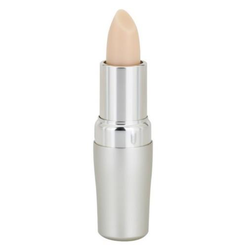 Shiseido Ochranný balzám na rty SPF 10 (Protective Lip Conditioner) 4 g