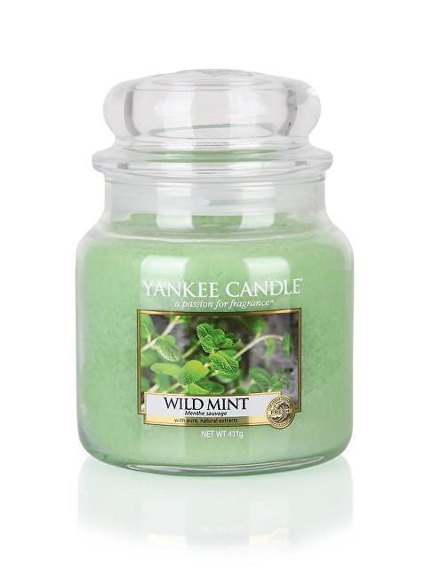 Yankee Candle Vonná svíčka Classic střední Wild Mint 411 g
