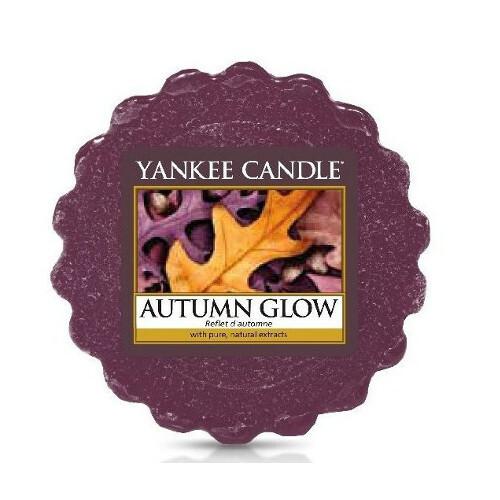 Yankee Candle Vonný vosk do aromalampy Zářivý podzim (Autumn Glow) 22 g