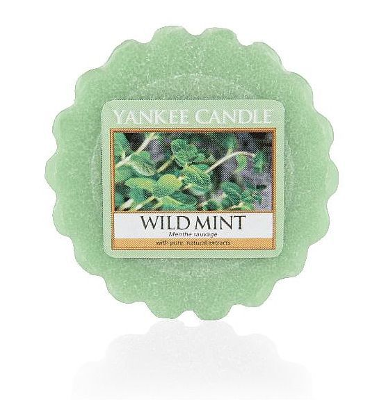 Yankee Candle Wild Mint vosk do aromalampy 22 g