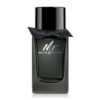 Burberry Mr. Burberry - EDP 100 ml