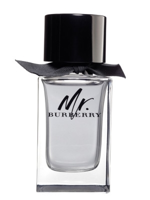 Burberry Mr. Burberry - EDT 30 ml