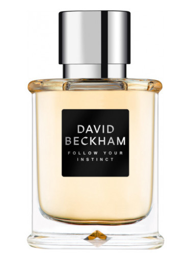 David Beckham Follow Your Instinct toaletná voda pánska 75 ml