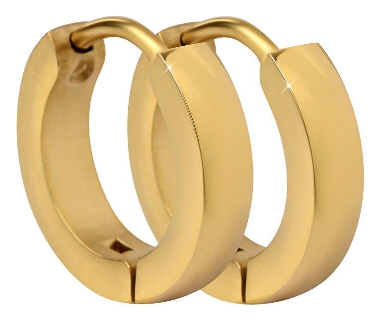 Troli Pozlacené ocelové náušnice kroužky