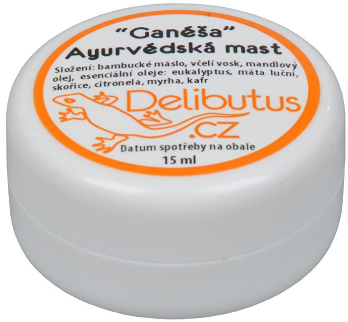 Zobrazit detail výrobku Delibutus Ayurvédská mast Ganéša 15 ml