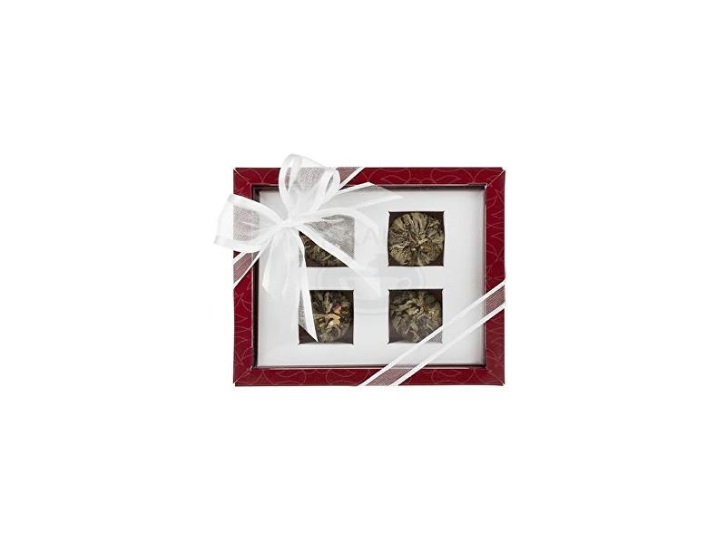 Oxalis Asteria červená set kvetoucích čajů 4 ks