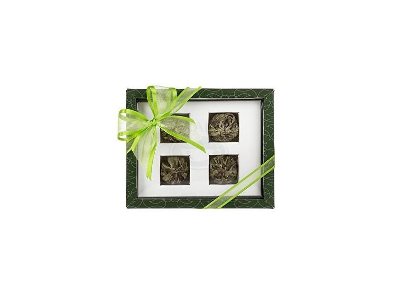 Oxalis Asteria zelená set kvetoucích čajů 4 ks