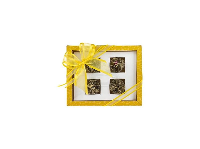 Oxalis Asteria žlutá set kvetoucích čajů 4 ks