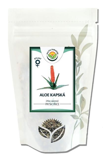 Salvia Paradise Aloe kapská - pryskyřice 50 g