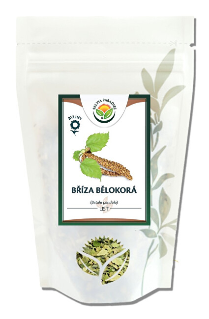 Salvia Paradise Bříza bělokorá list 70 g