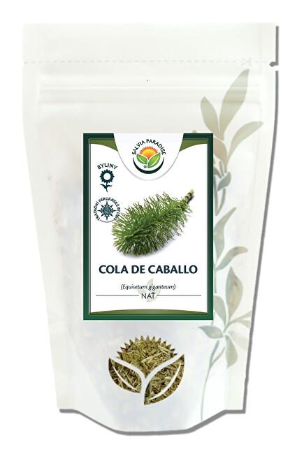 Salvia Paradise Cola de Caballo - Přeslička obří 30 g