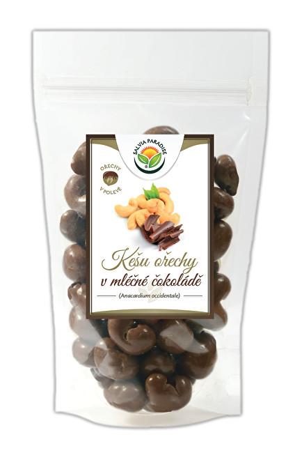 Zobrazit detail výrobku Salvia Paradise Kešu v mléčné čokoládě 300 g
