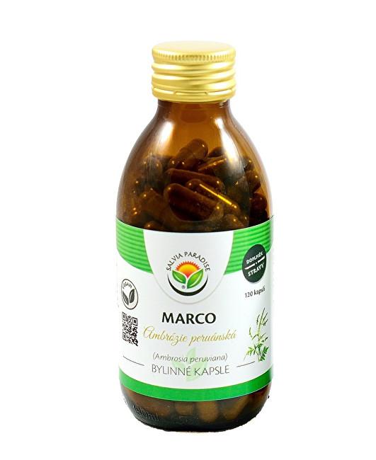 Zobrazit detail výrobku Salvia Paradise Marco - Ambrózie kapsle 60 ks