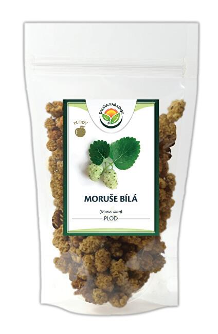 Zobrazit detail výrobku Salvia Paradise Moruše bílá plody 1000 g
