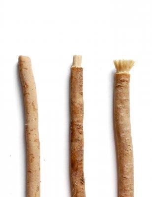 Zobrazit detail výrobku Yoni Přírodní zubní kartáček Miswak