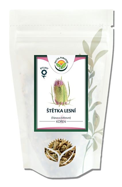 Zobrazit detail výrobku Salvia Paradise Štětka lesní kořen 50 g