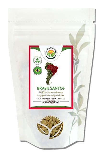 Salvia Paradise Káva - Brasil Santos zelená nepražené 1000 g