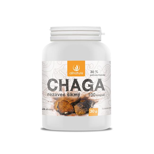 Zobrazit detail výrobku Allnature Chaga 100 kapslí