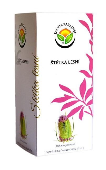 Zobrazit detail výrobku Salvia Paradise Štětka lesní n. s. 20 x 2 g