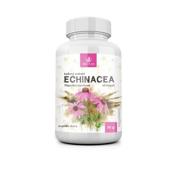 Zobrazit detail výrobku Allnature Echinacea bylinný extrakt 60 pastilek
