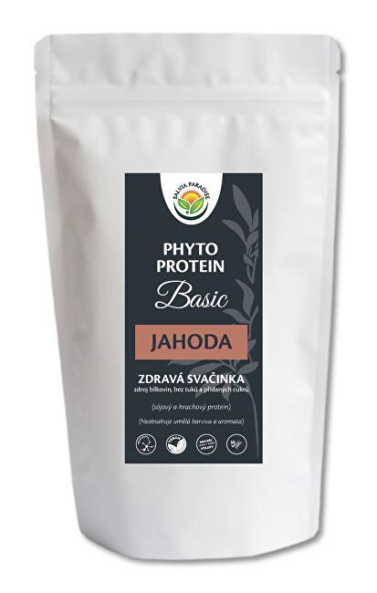 Salvia Paradise Phyto Protein Basic 300 g Jahoda