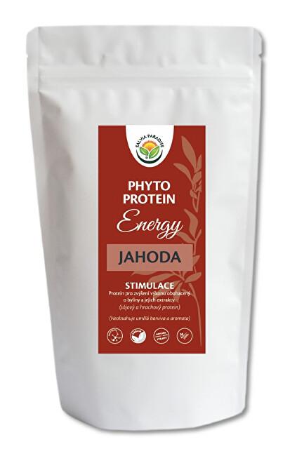 Salvia Paradise Phyto Protein Energy 300 g Jahoda