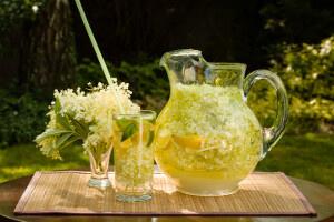 Bazová limonáda našich babičiek
