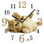 Ceas de perete14843