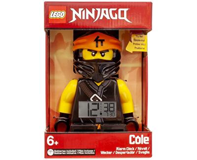 Ninjago Cole 7001118