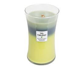 Vonná svíčka Trilogy Woodland Shade 609 g
