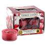 Aromatické čajové svíčky Cranberry Ice 12 x 9,8 g