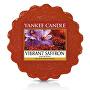 Vonný vosk do aromalampy Živoucí šafrán (Vibrant Saffron) 22 g