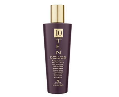 Alterna Luxusní vyživující kondicionér na vlasy TEN (Perfect Blend Conditioner)