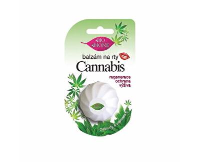 Balzám na rty Cannabis 6 ml