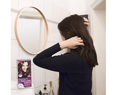 Permanentní barva na vlasy Perfect Mousse (Foam Coloration) - SLEVA - poškozená krabička