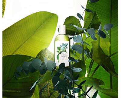 Gel de duș eucalipt Powered by Plants Eucalipt (Oil Body Wash) 250 ml