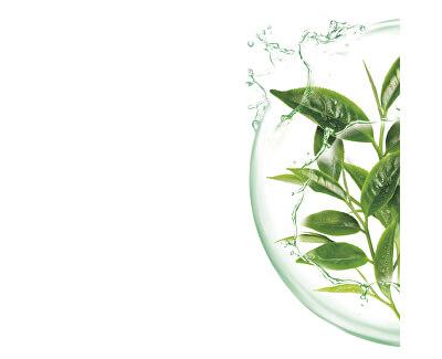 Superhydratační čistiaca pleťová maska so zeleným čajom Moisture + Freshness (Tissue Super Hydrating & Purifying mask) 1 ks