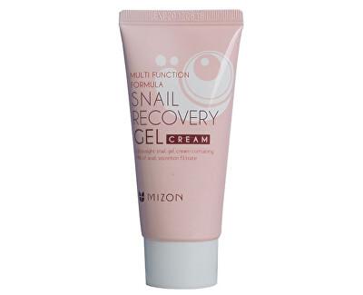 Mizon Pleťový gel s filtrátem hlemýždího sekretu 80% pro problematickou pleť (Snail Recovery Gel Cream) 45 ml