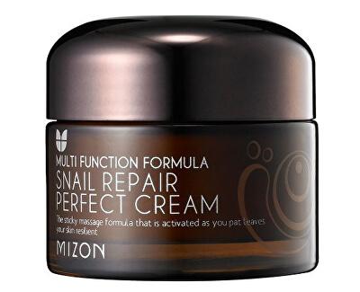 Mizon Pleťový krém s filtrátem hlemýždího sekretu 60% pro problematickou pleť (Snail Repair Perfect Cream) 50 ml