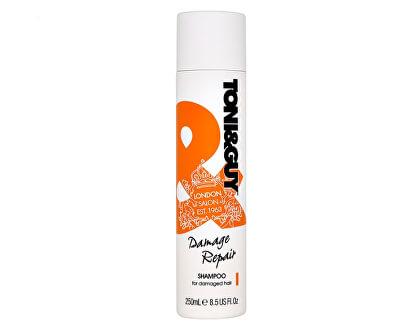 Toni&Guy Šampón pre poškodené vlasy (Shampoo For Damaged Hair) 250 ml<br /><strong>Starší balení produktu.</strong>