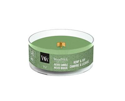 Aromatická malá svíčka s dřevěným knotem Hemp & Ivy 31 g