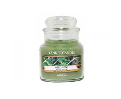 Yankee Candle Aromatická sviečka Classic malý Wild Mint 104 g