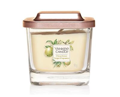 Aromatická svíčka malá hranatá Citrus Grove 96 g - SLEVA - bez samolepky na víčku