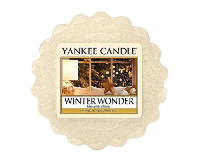 Vonný vosk Winter Wonder 22 g