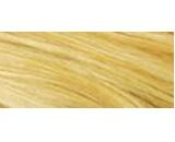 8.3 Světle zlatá blond